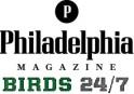 phillymagbirds247