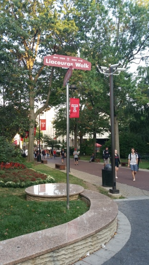 Photo Gallery: Fall Evening on Liacouras Walk